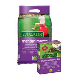 Grass Fertilizer Evergreen Maintenance