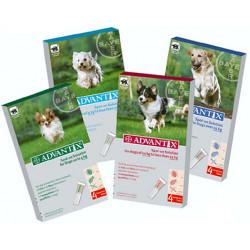 Advantix Solución Spot-On Perro