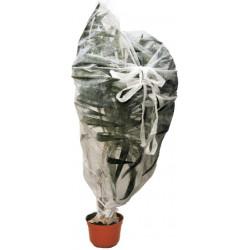 Bolsa de Protección 30 g 1,5x1,8 m 2 u.
