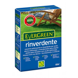 Abono KB Evergreen Reverdeciente 2 kg