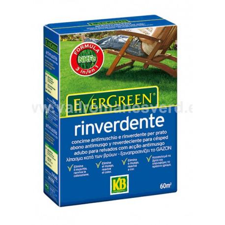 Abono KB Evergreen Reverdeciente 2 kg