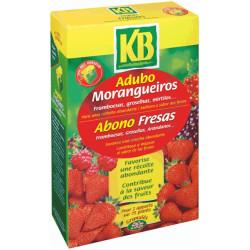 Abono Frutos Rojos 1 kg