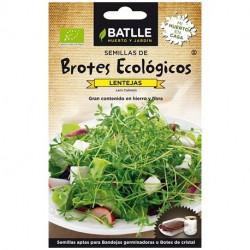 Semilla Lentejas Brotes Ecologicos