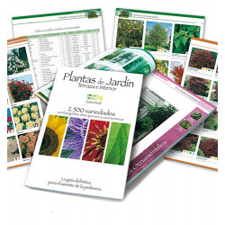 Libro de Jardín Terraza e Interior