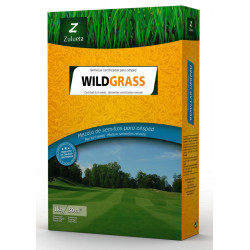 Semilla Césped Wildgrass