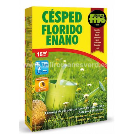 Semilla Césped Florido Enano