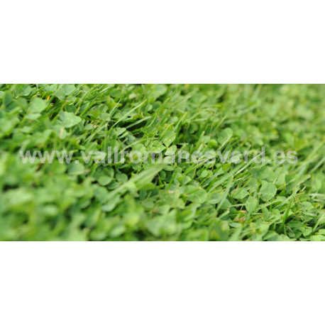Trifolium Repens Microclover 1 kg