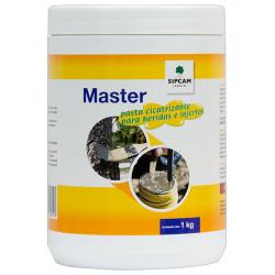 Pasta Cicatrizante Master 1 kg